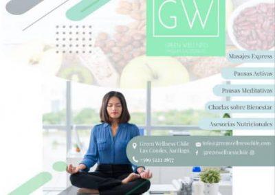 Flyer para green wellness
